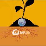 Resenha- OpenSAP SAPUI5 – Semana 1 e 2